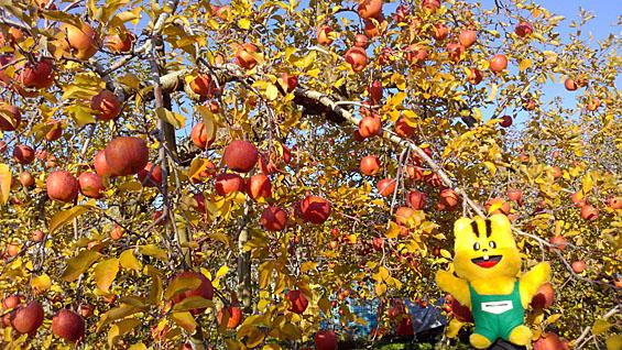 りんごの木と元気くん