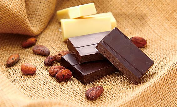 カカオからつくる手作りチョコレートキット